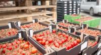 Naktinis ūkininkų turgus jau gausus lietuviškų gėrybių