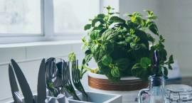 Atsibodo niūri virtuvė? Išbandykite funkcionalias puošmenas
